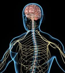 Brain Conditions